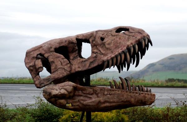 lakes - skull